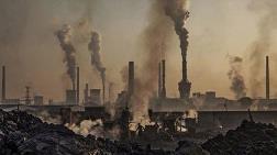 Çevreciler Kazandı, Termik Santral Projesi Durduruldu