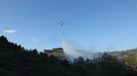 Burhaniye'de Zeytinlik Alanda Yangın