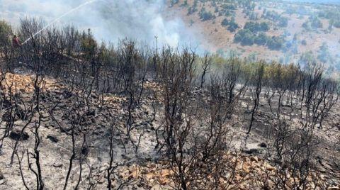 Denizli'deki Orman Yangınında 50 Hektar Zarar Gördü