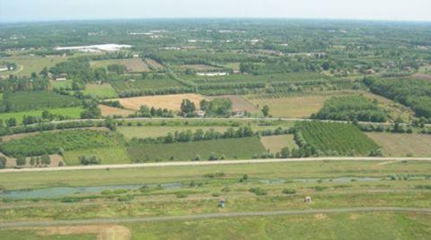 Çarşamba'ya Kurulan Biyokütle Enerji Santrali, Tarımı Bitirir