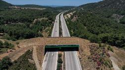 Otoyol Üzerindeki Ekolojik Köprünün Yapımı Tamamlandı