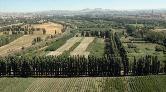 Atatürk Orman Çiftliği Yine Yapılaşmaya Açılıyor