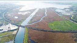 Bakan Albayrak'ın Arazisi Konut ve Ticaret Alanı Oldu