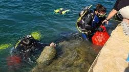 2050'de Denizlerde Balıktan Çok Mikroplastik Olacak