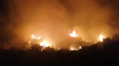 Manavgat'da Orman Yangını