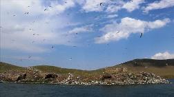 Ağrı'daki Balık Gölü Turizme Kazandırılacak