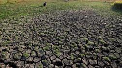 Dünyada 700 Milyon İnsan Su Kıtlığı Çekiyor