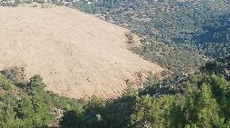 Karaburun'da GES için Ağaç Kesilmesine Tepki