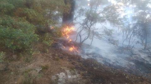 Çöplükte Çıkan Yangın Ormana Sıçradı