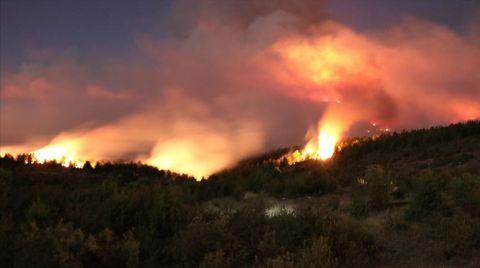 Kastamonu'daki Orman Yangınına Müdahale Sürüyor