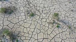 Sıcaklık Rekorları İklim Değişikliği Tartışmalarını Alevlendirdi