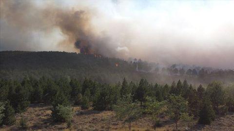 Çardak'taki Yangın Tamamen Kontrol Altına Alındı