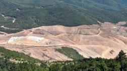 Kaz Dağları'nda 3.5 Milyon Ağaç Kesilecek