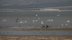 Reyhanlı Barajı 3 Ekim Cumartesi Günü Hizmete Alınacak