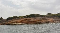 Didim'de Deniz Altında Liman Kalıntıları Bulundu