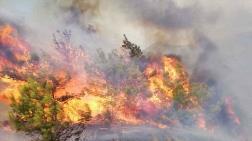 Bu Yıl 13 Bin Hektar Orman Kül Oldu