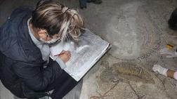 Sinop'ta Bulunan 1600 Yıllık Mozaikler Turizme Kazandırılacak