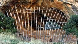 Definecilerin Tahrip Ettiği Mağarada Demir Kapılı Önlem