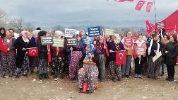 Aydın'da Doğayı Savunanlara Dava Açıldı