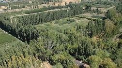 Atatürk Orman Çiftliği'nde 'Gizli' Yapılaşma