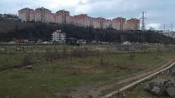 15 Milyonluk Botanik Park, Şehir Hastanesi için Yıkıldı