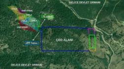 Ormanda Madene Yine ÇED Gerekli Değil