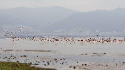UNESCO Adayı Gediz Deltası için Birliktelik