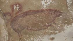 Mağarada 45 Bin Yıllık Hayvan Çizimi Bulundu
