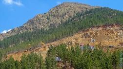 Sandras Dağı Tehlikede