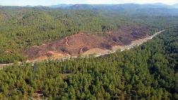 Türkiye'de 133 Altın Madeni Ruhsatı Verilmiş