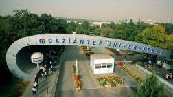 Gaziantep Üniversitesi'nde Fıstık Ağaçları Kesildi