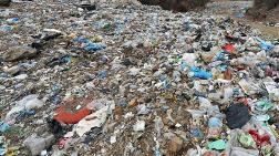 İngiltere'nin Çöpünün Yarısını Türkiye Alıyor