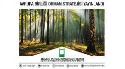 Avrupa Birliği Orman Stratejisi Yayınlandı