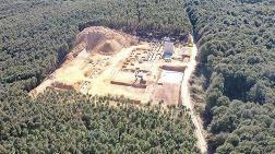 Kuzey Ormanları için Harekete Geçtiler