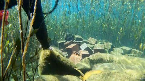 Antalya'nın Su Kaynağı Kırkgöz'de Su Altı Temizliği Yapıldı