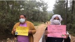 İkizköylü Kadınlar, Ormancıları Durdurdu
