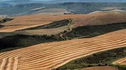 Tarım Alanındaki OSB için Yürütmeyi Durdurma Kararı