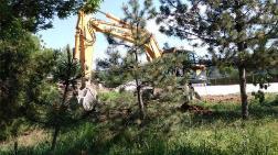 Eskişehir'de Ağaçlar, Düğün Salonu için Kesildi