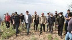Güzelpınar'daki Taşocağının Faaliyeti Durduruldu