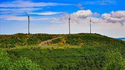 Akkuş'a Kurulan Rüzgar Enerji Santrali 12 Bin Evin İhtiyacını Karşılıyor