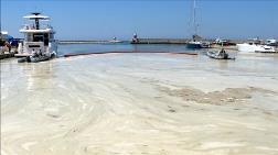 Deniz Kirliliği ve Müsilajla İlgili Halk Ne Düşünüyor?