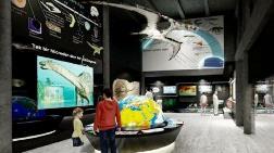 Kayseri'de Fosil Müzesi Kurulacak
