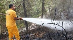 1 Günde 17 Orman Yangını