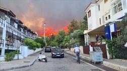 Güneyde Her Yerde Yangın Var