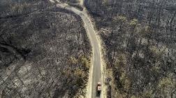 Yangınlarından Etkilenen Alanlar 'Afet Bölgesi' İlan Edildi