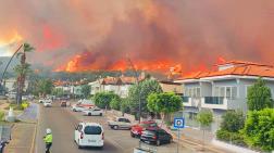 Muğla'da 66 Bin Hektar Orman Yandı