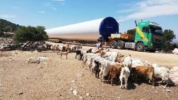 Germiyan'da İzinsiz RES İnşaatı Yine Başladı