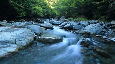 Suyun Rotası Şura ile Belirlenecek
