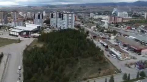 Botanik Parkı, Önce İmara Açıldı, Şimdi Satılıyor