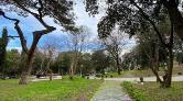 Sedef ve Kaşık Adaları ile Yıldız Parkı'nda Yapılaşmanın Önü Açıldı